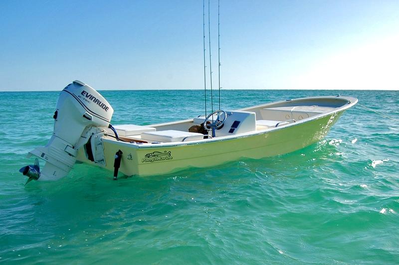 Panga 22 Boat