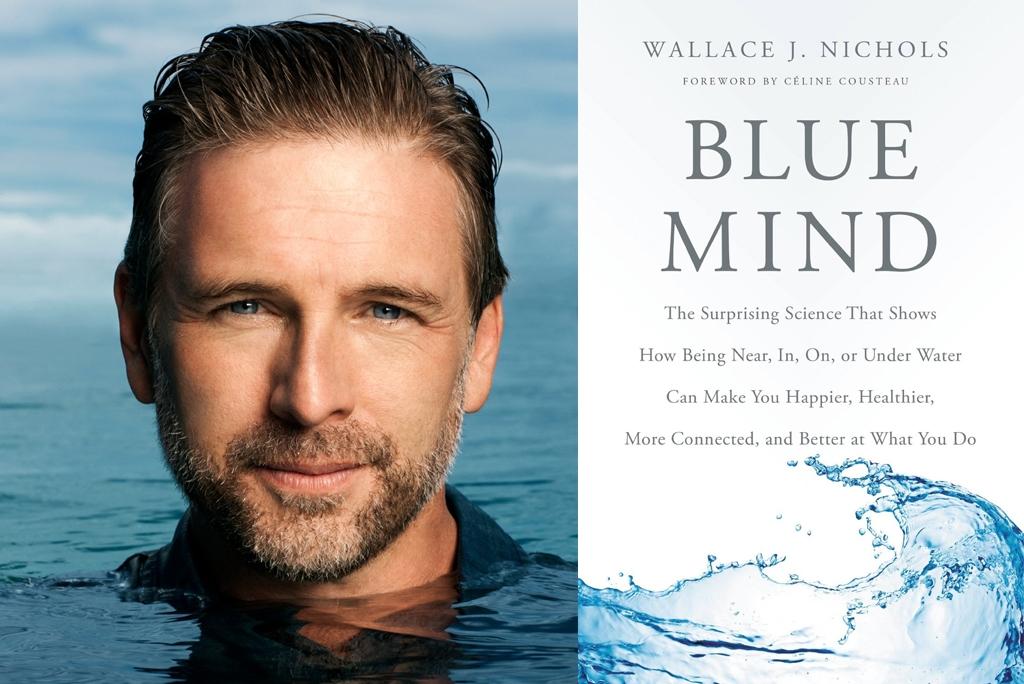 BlueMindBook
